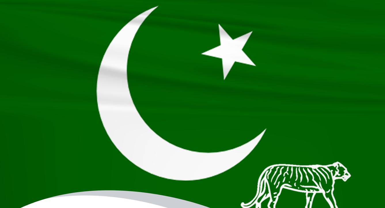 PML-N party flag