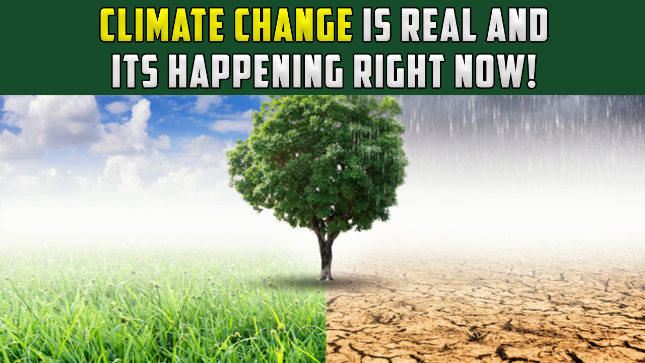 Climate Change Is Real And It's Happening Right Now!