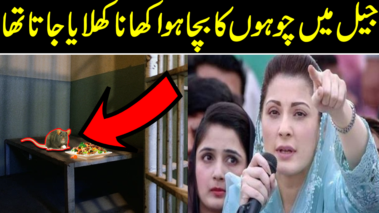 Was Fed Leftovers Of Rats In Jail, Claims Maryam Nawaz